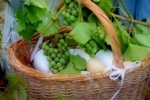 harvest-3736833_1920